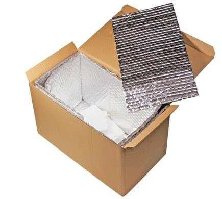 Thermobox mit Kühlakku für Frischeartikel